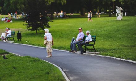 Employee Retirement Plans: Preferences of Employers — Study